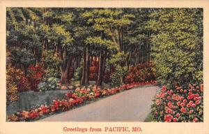 Pacific Missouri Greetings Road Scenic Vintage Postcard JD933974