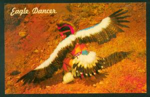 Native American Indian Eagle Dancer Pueblo Indians Dance Picture Postcard