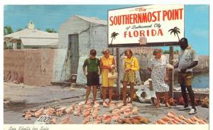 Sea Shells for Sale, Florida, 1960s unused Postcard