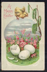Easter Chick Eggs BIN