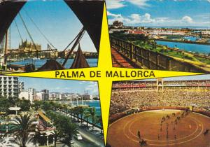 Spain Palma de Mallorca Multi View