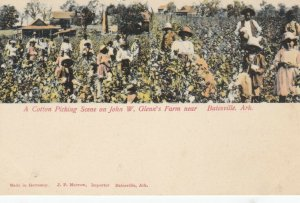 BATESVILLE , Arkansas , 00-10s ; Cotton Picking