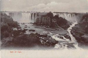 Salto del Laja Chile Water Falls Scenic View Antique Postcard J49186