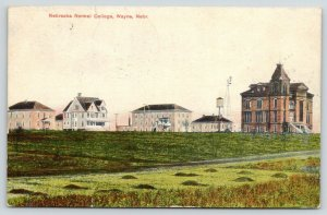Wayne Nebraska~Nebraska Normal College~View Across Campus~1908 Postcard