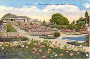 A section of rose garden, Rock Springs Park, Fort Worth, Texas, 30-40s