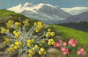 switzerland, Mountain Panorama with Flowers (1920s) Artist Signed A. Wagner