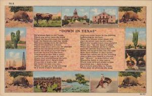 Down In Texas Poem Multi View Curteich