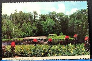Florida Silver Springs Glass Bottom Boats Vintage Postcard