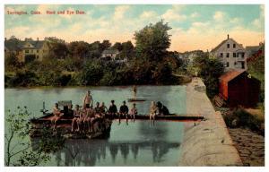 Connecticut Torrington , Honk and Eye Dam, Boys swimming
