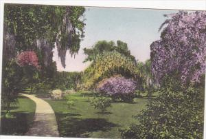 Walk Through The Gardens Kenilworth Lodge Sebring Florida Albertype