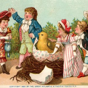 1882 Gaily Dressed Crowd Watches Bird Hatch From Giant Egg Atlantic Pacific Tea