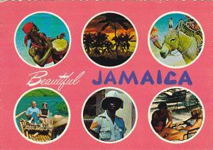 Beautiful Jamaica Multi View