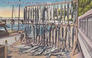 Fishing Two Hour Catch Of Kingfish Fort Myers Florida