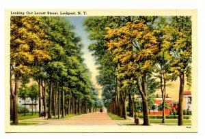 NY - Lockport. Locust Street