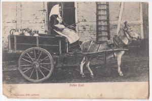 Social History; Woman With Milk Churns in Donkey Cart PPC c 1910's, Germany