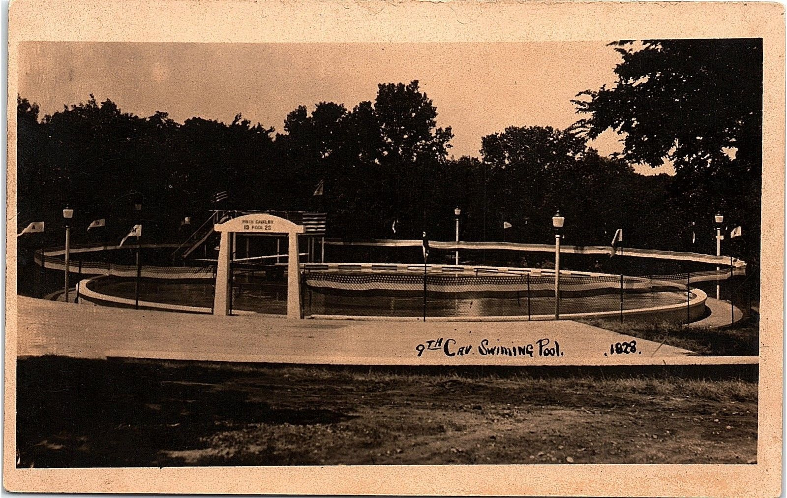 history of swimming essay