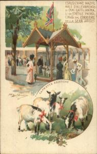 Animal Breeders Exhibition Cats Dogs Italy c1900 A/S Postcard SHEEP