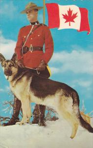 Royal Canadian Policeman with German Shepard Dog, Flag, PU-1966