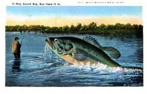 Nova Scotia Exzagareted Fish