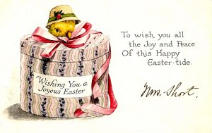 Greeting - Easter. Chick