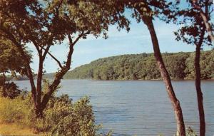 Oregon Illinois~Distant View of Blackhawk Statue~Rock River~1950s Postcard