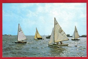 STARTING A SAIL BOAT RACE, ,  FLORIDA  SEE SCAN  PC68