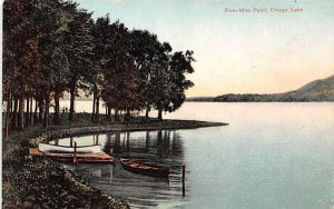 Five Mile Point Otsego Lake, New York Postcard