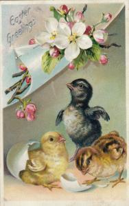 EASTER Greetings; Chicks, eggshell, Flowers, PU-1909; TUCK # 700