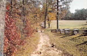 Shiloh Tennessee~Civil War Battlegrounds~Sunken Road~Split Rail Fence~1960s PC