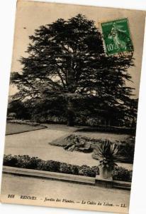 CPA RENNES-Jardin des Plantes-Le Cédre du Liban (265216)