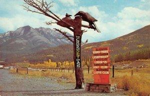 Crowsnest Pass, Blairmore, Alberta, Canada Roadside Sign c1960s Vintage Postcard