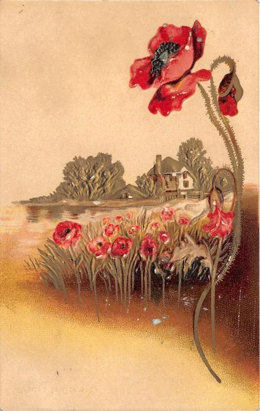 Birthday Greeting~Embossed Poppies Along Creek~Close View of Poppy~c1910 Pc