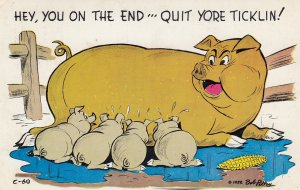 Pigs ; Hey, you on the end'''Quit yore Ticklin! , 1955