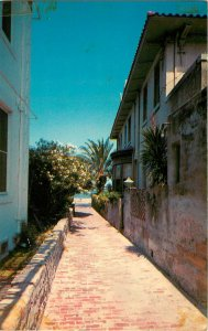 Postcard Treasure Street, Narrowest Street In the US, St. Augustine, FL