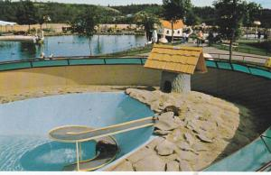 The Playful Otters Swimming Area, Children´s Zoo, Storyland Valley, Edmonton...
