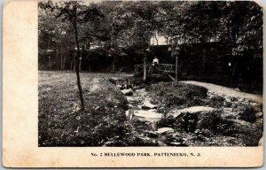 c1900s PATTENBURG, New Jersey Postcard No. 2 BELLEWOOD PARK Rustic Bridge View