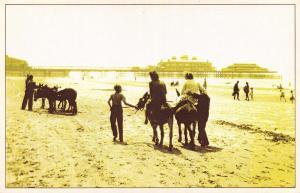 Nostalgia Postcard Donkey Rides on Blackpool Beach, July 1950 #N116