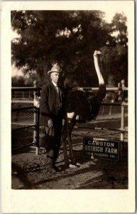1910s South Pasadena California RPPC Real Photo Postcard Man & Ostrich / Cawston