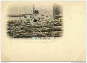 china, HONG KONG, Native Chinese Coolie carrying Bamboo (1899) IV 20 Postcard