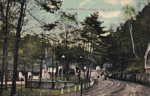 Scene In Ross Park, BINGHAMTON, New York, PU-1913
