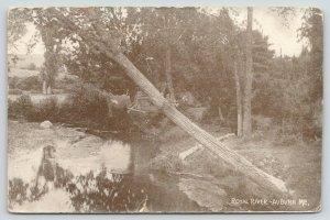 Auburn Maine~Tree Down Along Royal River Bank~Reflection~1908 B&W Postcard