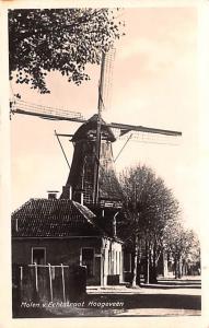 Holland Molen v Echtstraat Hoogeveen  Molen v Echtstraat Hoogeveen