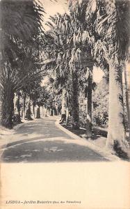Portugal Lisboa - Jardim Botanico (Rua des Palmeiras) road jardin garden