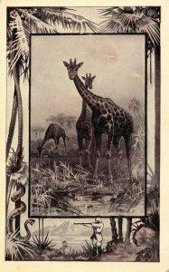 Great White Hunter~African Safari Serie~Giraffe~Jungle Border~1909 MJ Mintz