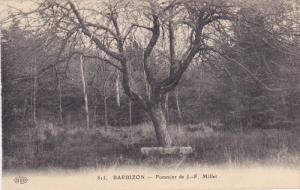 BARBIZON, Seine Et Marne, France, 1900-1910´s; Pommier De J.-F. Millet