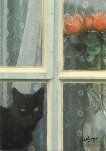 Animal Postcard Reve de chat Harold Krieger