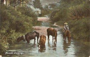 Horses drinking Old vintage English postcard