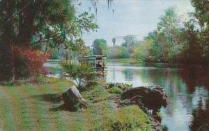 Florida Silver Springs Florida's International Attraction 1972