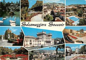 Italy Salsomaggiore Souvenir multiviews Hotel Swimming Pool Park Lake Birds