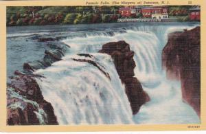 New Jersey Paterson Passaic Falls Curteich
